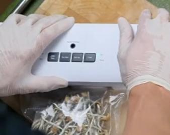Almacenamiento de hongos mágicos