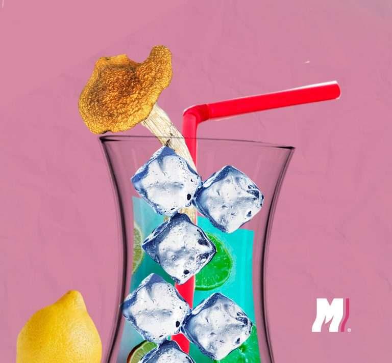 mezclar-hongos-con-alcohol