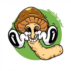 Sello de esporas Psilocybe cubensis – Pensacola